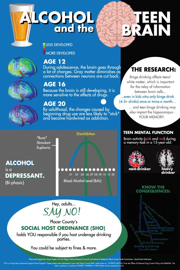 alcohol and the teenage brain